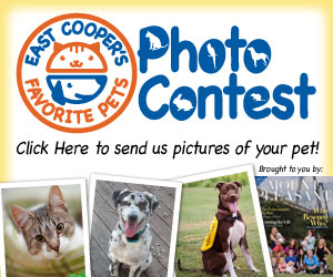Submit your pet's photo for Mount Pleasant Magazine's Pet Photo Contest!